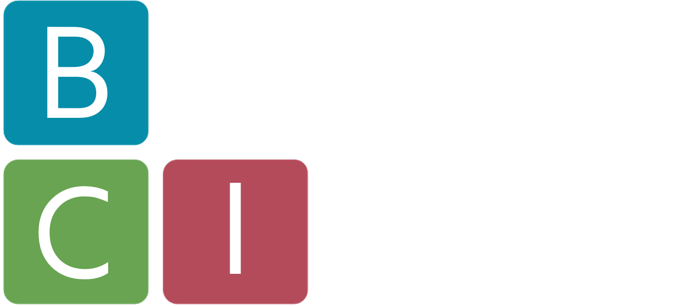 BluHeera AG